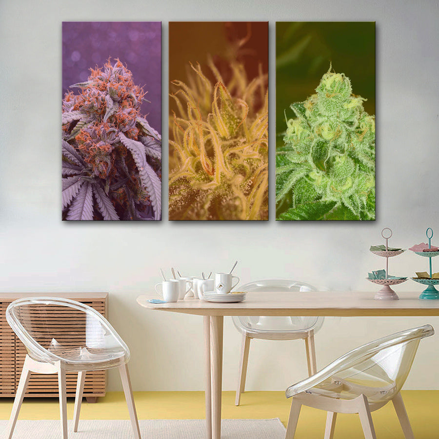 Weed Strains Canvas Set