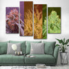 Weed Strains Canvas Set - Canvasist