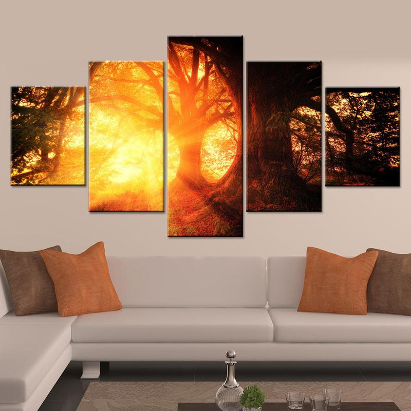 Sunshine through Forest Canvas Set - Canvasist