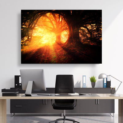 Sunshine through Forest Canvas Set