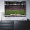 Cardiac Cardinals Stadium Canvas Set - Canvasist