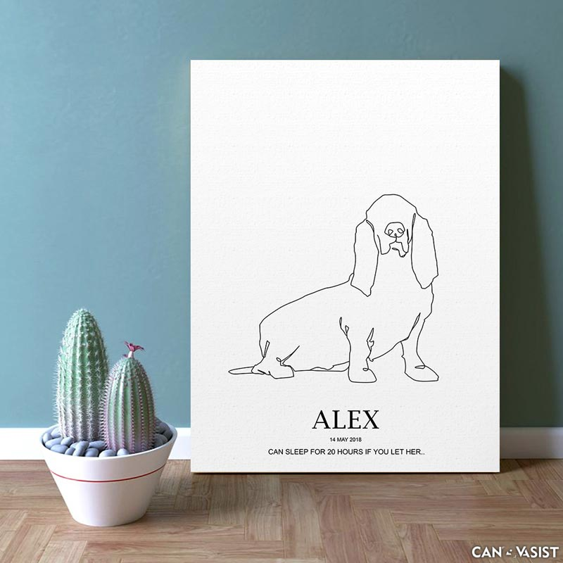 Basset Hound - Canvasist