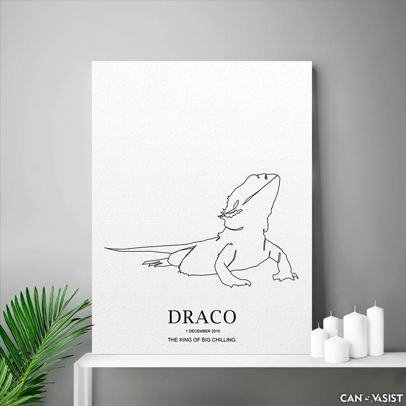 Bearded dragons - Canvasist