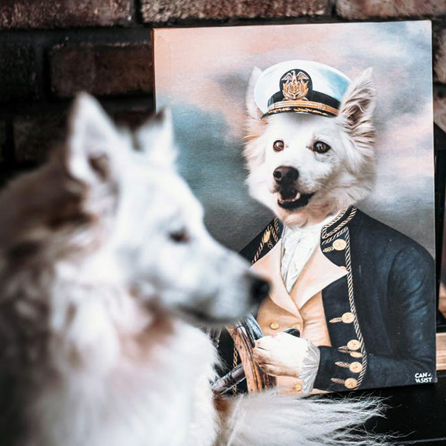 Sailor Pet Canvas - Canvasist