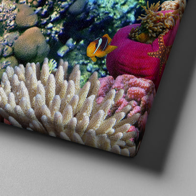 Fishes Canvas Set - Canvasist