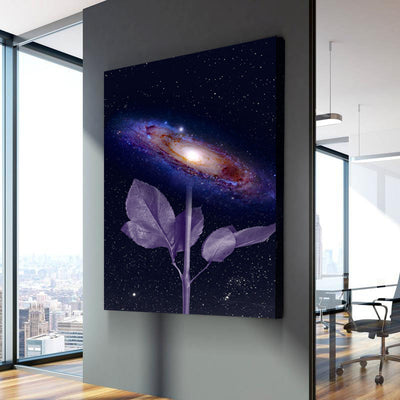 Universe in a flower
