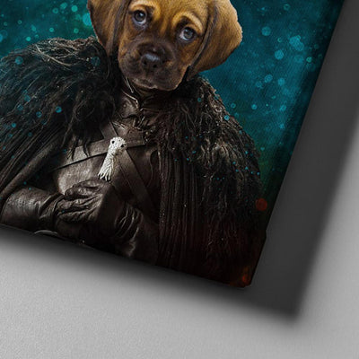 Jon Snow Pet Canvas - Canvasist
