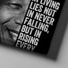 Nelson Mandela - Canvasist