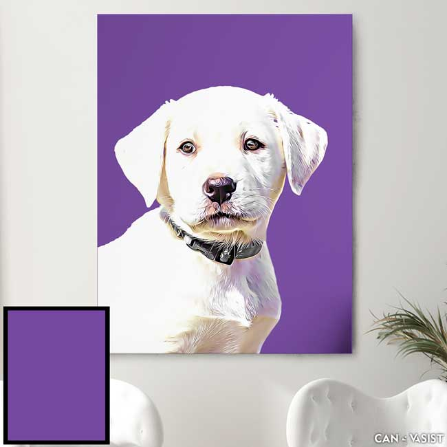 Solid Backgrounds - Pet Canvas