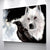 The North Remembers Canvas Set - Canvasist