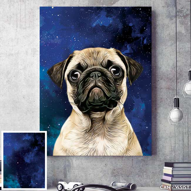 Texture Backgrounds - Pet Canvas