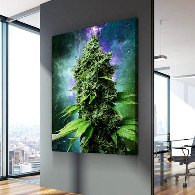 Weed Plant - Canvasist