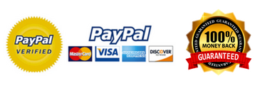 Image result for trust seal paypal