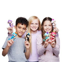 Einstein Kids Monkey(Educational Toys)