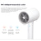 Xiaomi Mijia Water Ion Hair Dryer Temperature Control