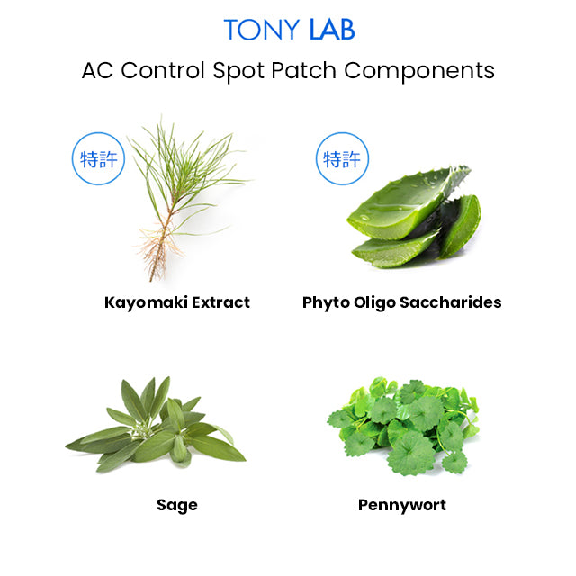 TONYMOLY Tony Lab AC Control Spot Patch Components