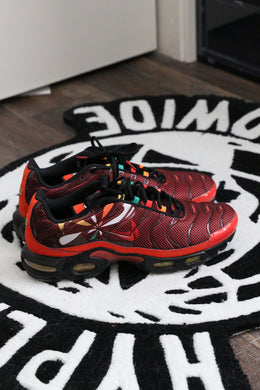 Nike Air Max Plus Sunburst | Worn | Size 12
