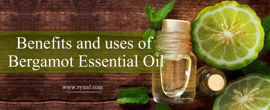 Bergamot Essential Oil Uses and Benefits