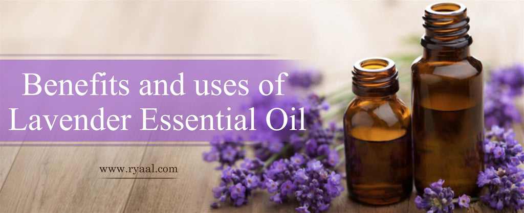 Benefits-and-uses-of-lavender-essential-oil