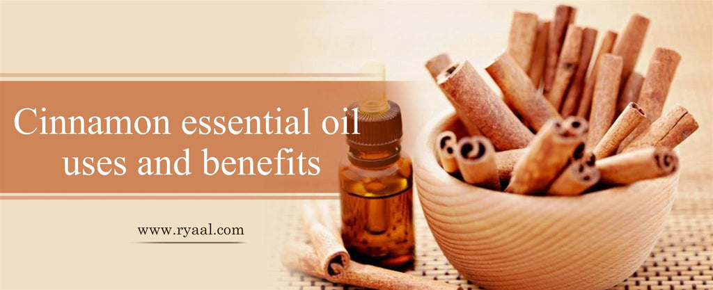 cinnamon-essential-oil-uses-and-benefits
