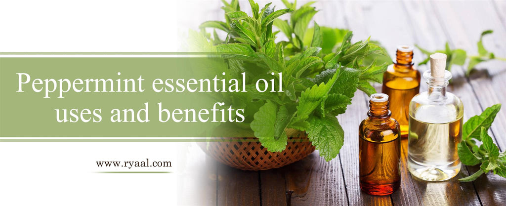peppermint-essential-oil-uses-and-benefits