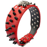 Spiked Studded Leather Dog Collar With Skull