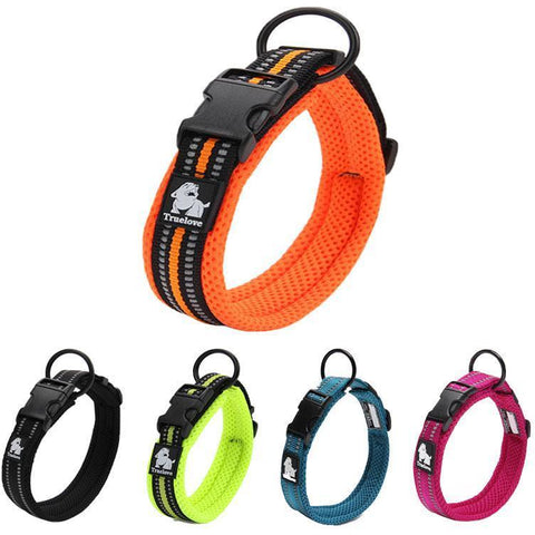 Reflective Durable Nylon Collar