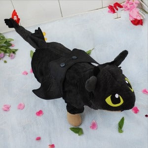 Fly dragon cat costume - furry-tale