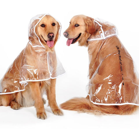 Transparent Raincoat For Big Dogs - Limited Edition
