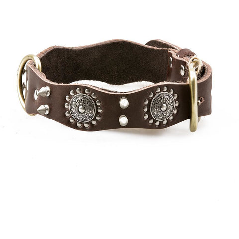 Genuine Leather Studded Collar