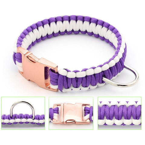 White & Purple Paracord Collar And Leash With Silvery Buckle