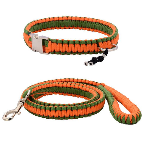 Orange & Green Paracord Collar And Leash With Silvery Buckle