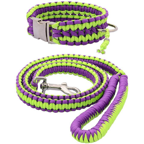 Purple & Green Paracord Collar And Leash With Silvery Buckle - furry-tale