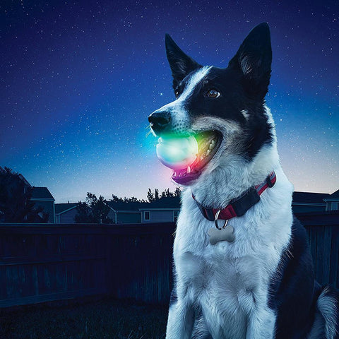 Silicon Durable Chew LED Playing ball