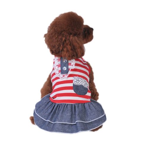 Striped Lace Dog Dress