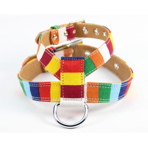 Pu Leather Colorful Harness