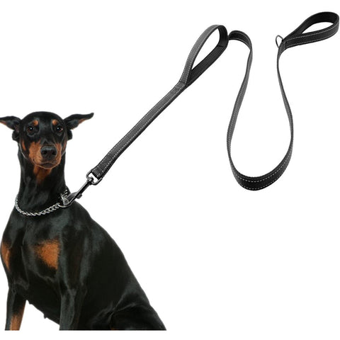 2 Handles Leash