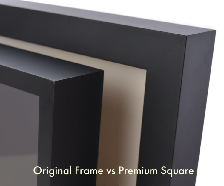 Shart Original Frame vs. Premium Frame