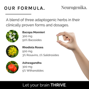 Thrive - For Working Memory, Mental Speed & Attention