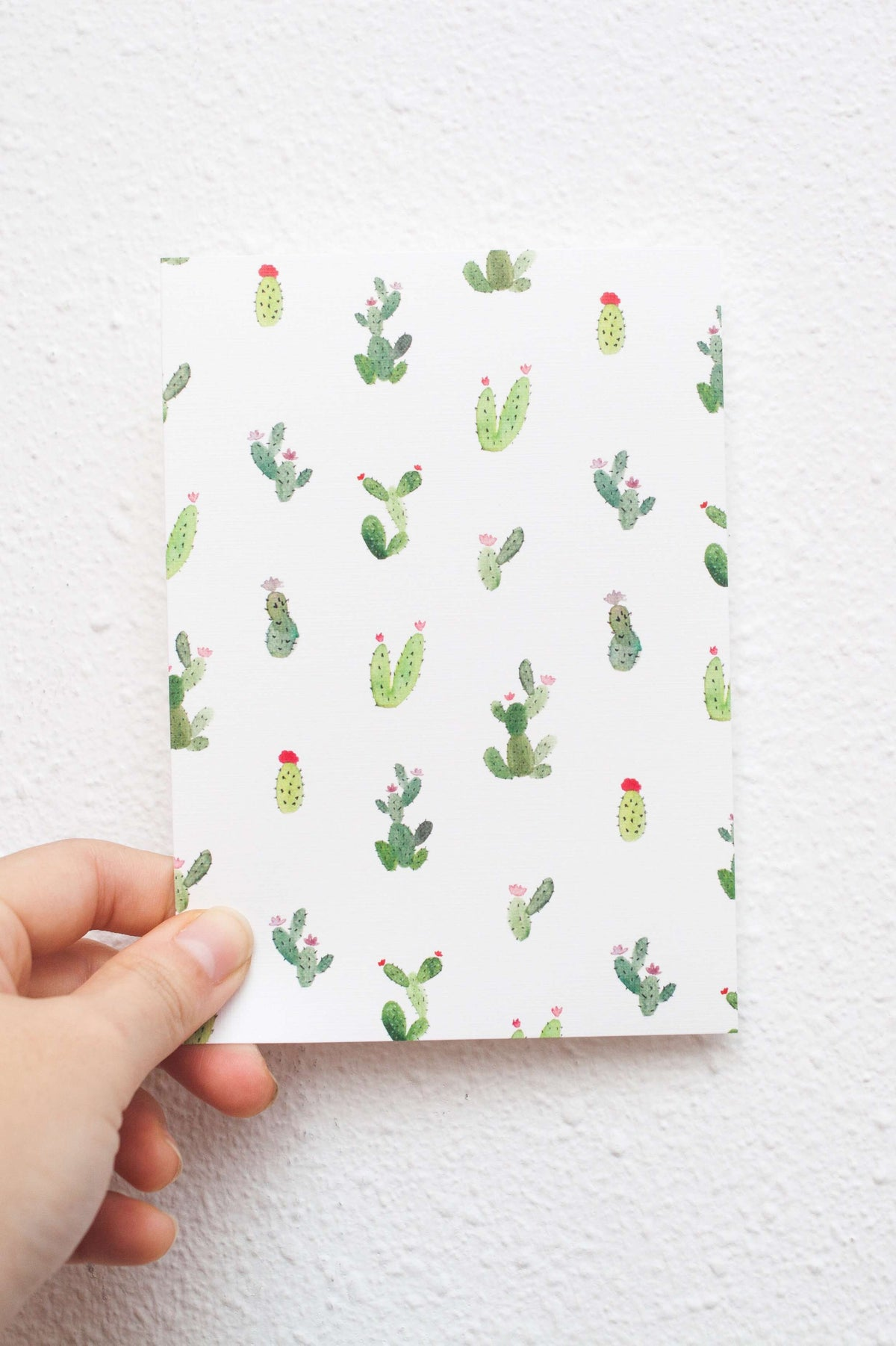 Mini Succulents | Postcard by L - hello flowers!