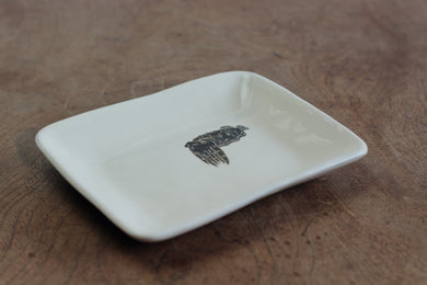 TAKUNOBU PORCELAIN SQUARE DISH CUTTLE FISH TKSD13