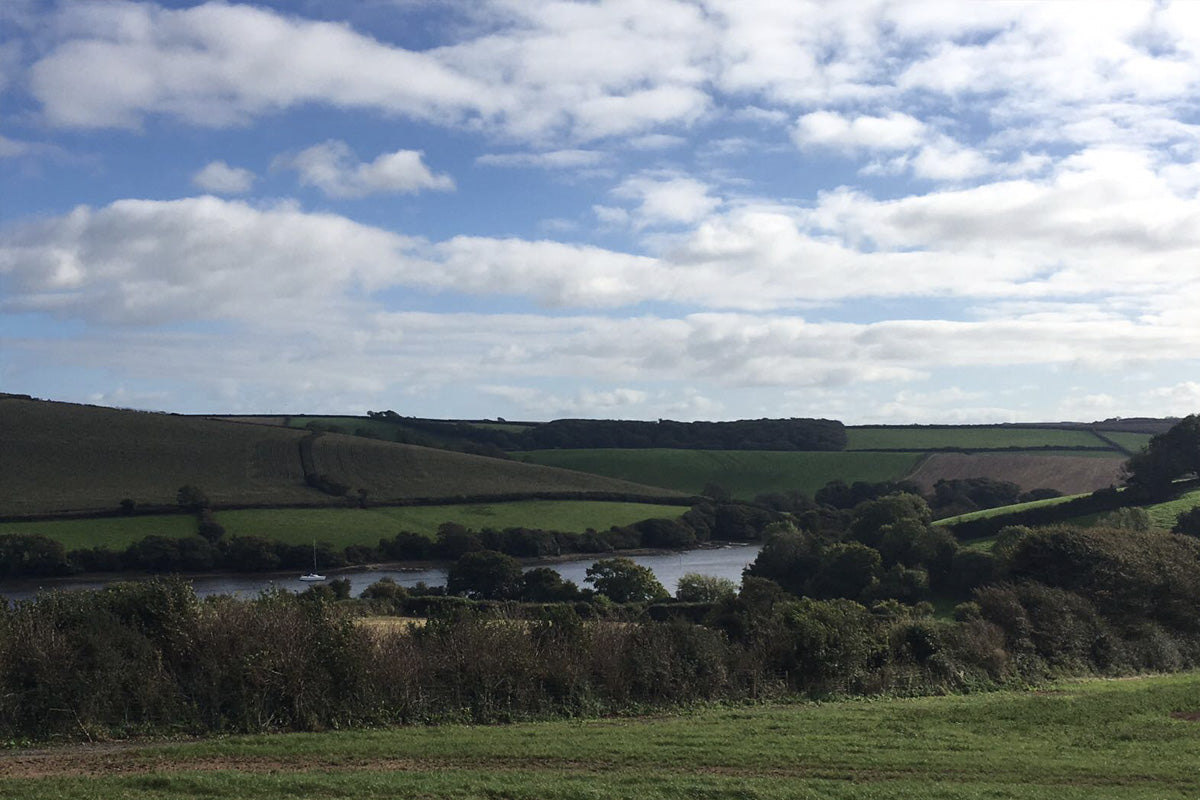 Springfield Farm Shop – Coffee with a view!