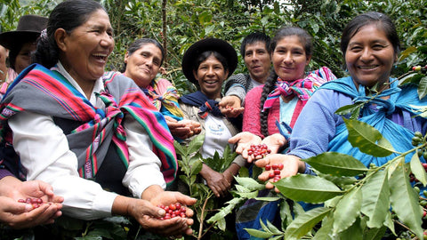 Fairtrade Coffee Cooperative with women coffee farmers in a group
