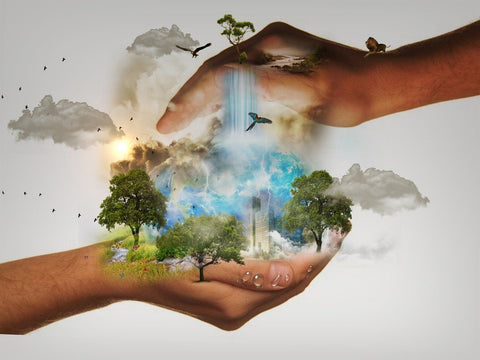 Hands holding an illustration representing conservation and sustainability