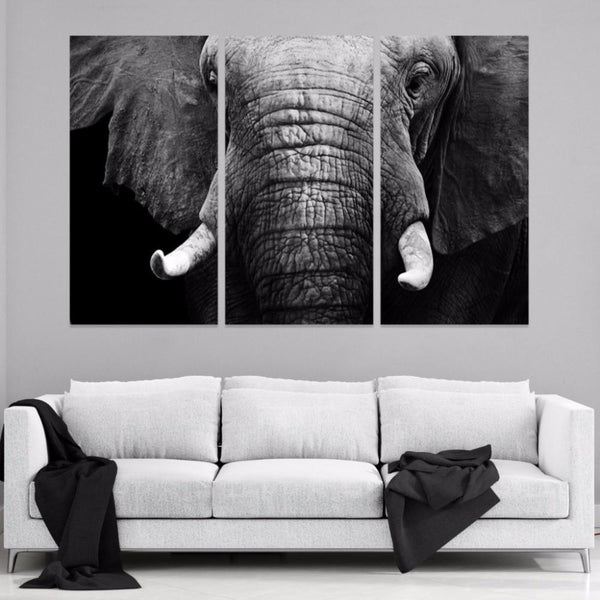 Elephant Portrait 3 Piece Canvas - Gaia-Stock.com