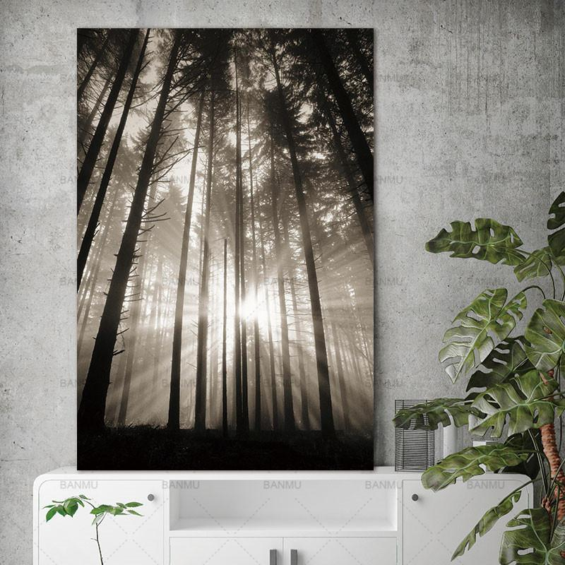 The Nordic Forest - Gaia-Stock.com