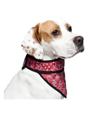 Aqua Coolkeeper Cooling Bandana For Dogs ( 4 Sizes ) | Perromart Online Pet Store Malaysia