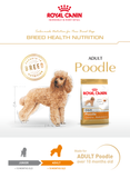 Royal Canin Breed Health Nutrition Poodle Adult Dry Dog Food (3 Sizes)