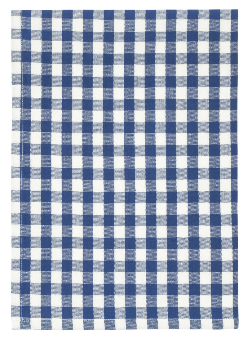 Blue Check Picnic Dish Towel