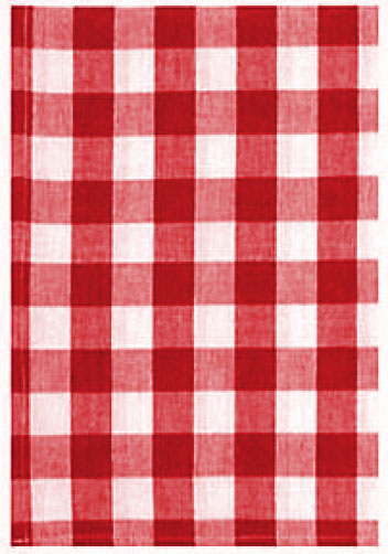 Red Picnic Check Dish Towel